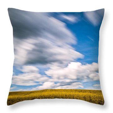 Time Goes By Throw Pillow by Davorin Mance