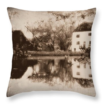 Time Immemorial II Throw Pillow