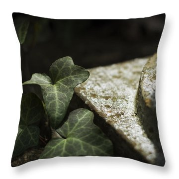 Throw Pillow featuring the photograph Time Is The Substance by Rebecca Sherman