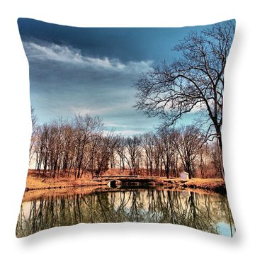 Time Out  Throw Pillow by Tom Druin
