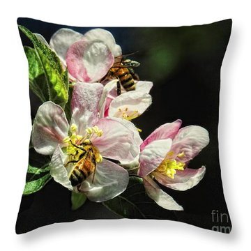 Time To Make The Honey Throw Pillow