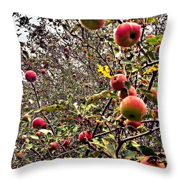 Time To Pick The Apples Throw Pillow by Garren Zanker
