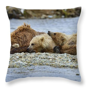 Time To Relax Throw Pillow by Dan Friend