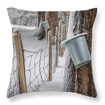 Time To Tap Throw Pillow by Scott Thorp