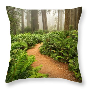 Timeless Throw Pillow by Alice Cahill