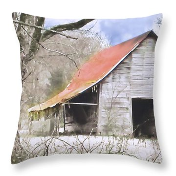 Timeless Throw Pillow by Betty LaRue