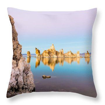 Timeless Throw Pillow by Tassanee Angiolillo
