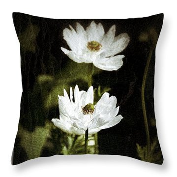 Throw Pillow featuring the photograph Timeless Two by Darla Wood
