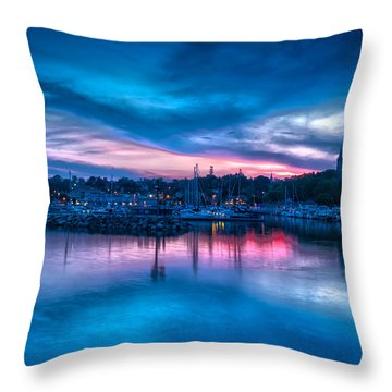 Timeless View Throw Pillow