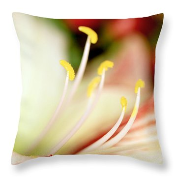 Timeofyear Throw Pillow by Janice Bajek