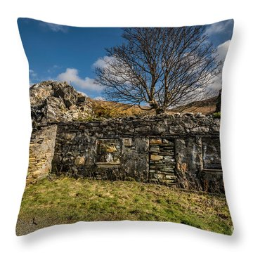 Times Past Throw Pillow by Adrian Evans
