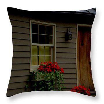 Tin Ribbon Throw Pillow