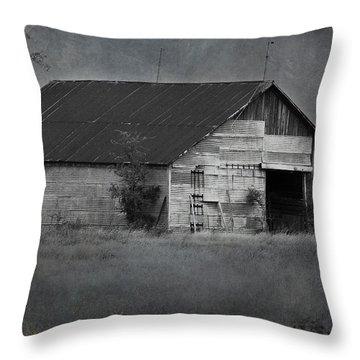 Tin Top Throw Pillow