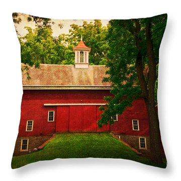 Tinicum Barn In Summer Throw Pillow
