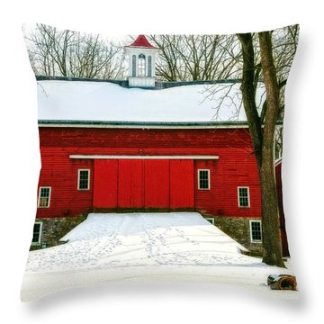 Throw Pillow featuring the photograph Tinicum Barn In Winter II by Debra Fedchin