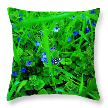 Throw Pillow featuring the photograph Tiny Butterfly by Sherman Perry