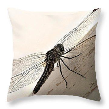 Tiny Magnificence  Throw Pillow