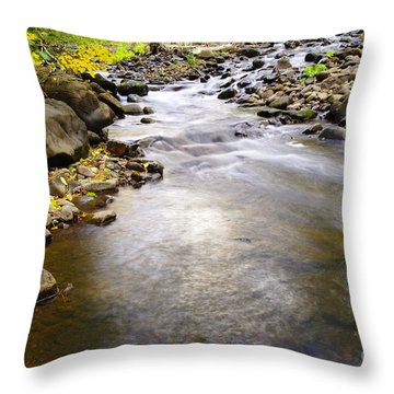 Tiny Rapids At The Bend  Throw Pillow by Jeff Swan