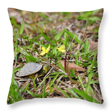 Tiny Turtle Throw Pillow by Al Powell Photography USA
