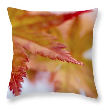 Tip Throw Pillow by Caitlyn  Grasso
