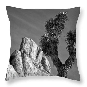 Joshua Tree Np Throw Pillows