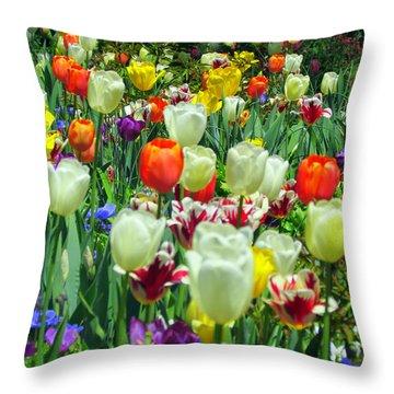 Tiptoe Through The Tulips Throw Pillow by Elizabeth Dow
