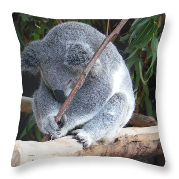 Tired Koala Bear With Stick Throw Pillow