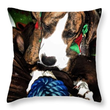 Throw Pillow featuring the photograph 'tis Better To Receive by Robert McCubbin