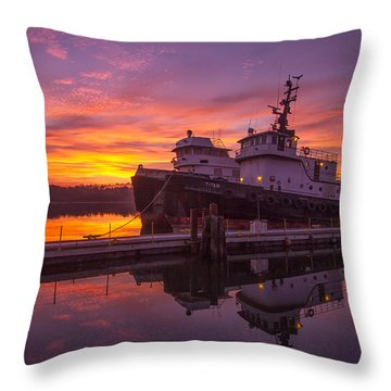 Titan Throw Pillow by Patricia Davidson