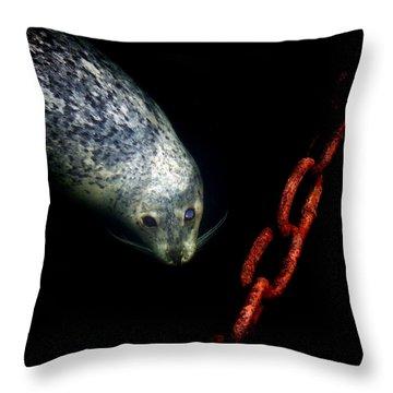 To A Pier  Throw Pillow