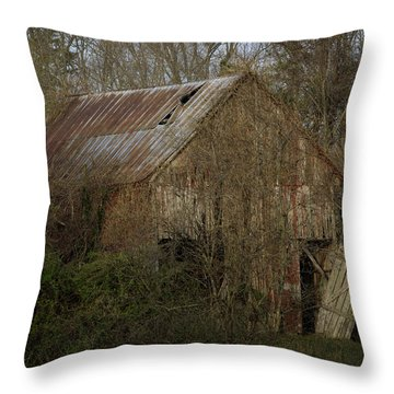 Throw Pillow featuring the photograph To Be Versed In Country Things by Rebecca Sherman