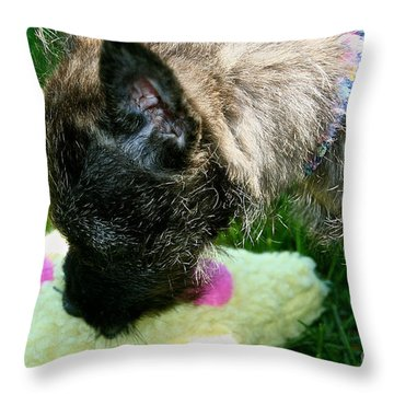 To Catch A Star Throw Pillow by Susan Herber