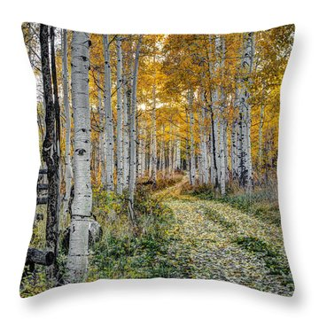 To Grandmother's House Throw Pillow by George Buxbaum