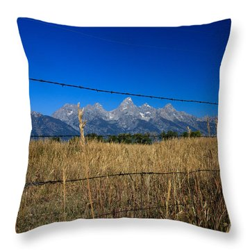 To Keep All The Nature In Throw Pillow