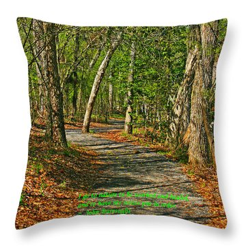 To Sooth The Soul Throw Pillow by Andy Lawless