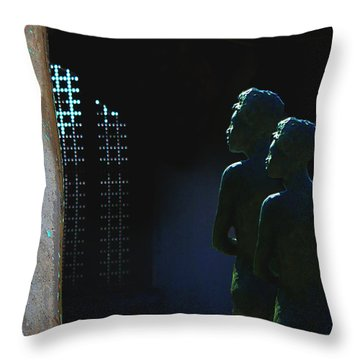 Throw Pillow featuring the photograph To The Light by Lin Haring