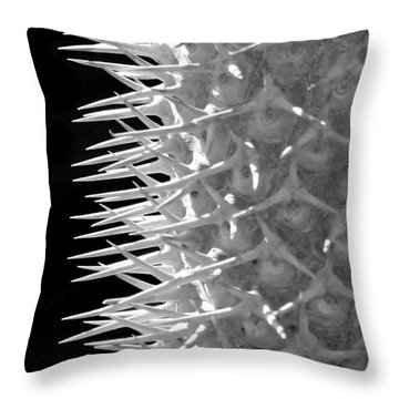To The Point Throw Pillow by Sabrina L Ryan