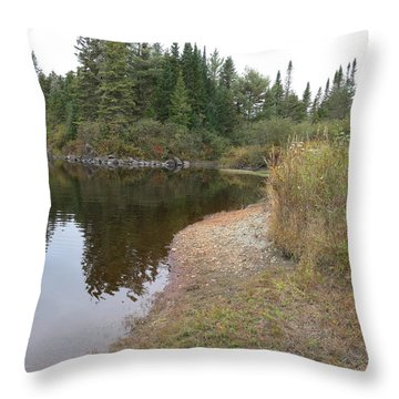 To The River Throw Pillow by Jean Macaluso