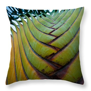 Throw Pillow featuring the photograph To The Sky by Sebastian Musial