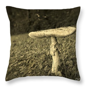 Toadstool Throw Pillow by Edward Fielding