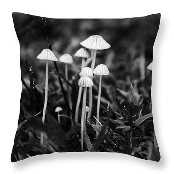 Toadstools V3 Throw Pillow by Douglas Barnard