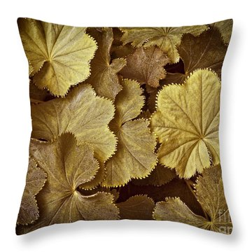 Toasted Ladys Mantle Throw Pillow
