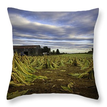 Tobacco Road I Throw Pillow