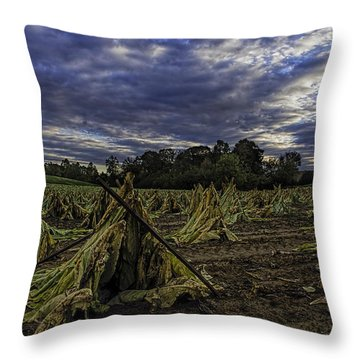 Tobacco Road II Throw Pillow