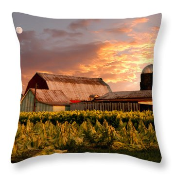 Tobacco Row Throw Pillow by Randall Branham