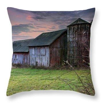 Tobin's Barn Throw Pillow
