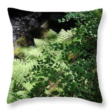 Tod Creek  Throw Pillow