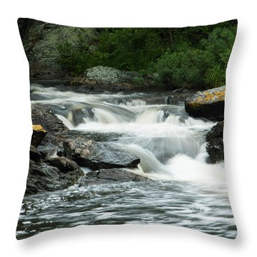 Throw Pillow featuring the photograph Toddy Pond Stream In Surry Maine by Kirkodd Photography Of New England