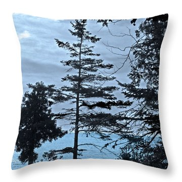 Toft Point Blue Throw Pillow