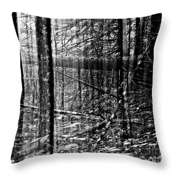 Toft Point Reveal Throw Pillow